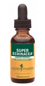 Echinacea Tincture
