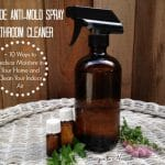 Homemade Anti-Mold Spray & Bathroom Cleaner + 10 Ways to Reduce Moisture in Your Home and Clean Your Indoor Air