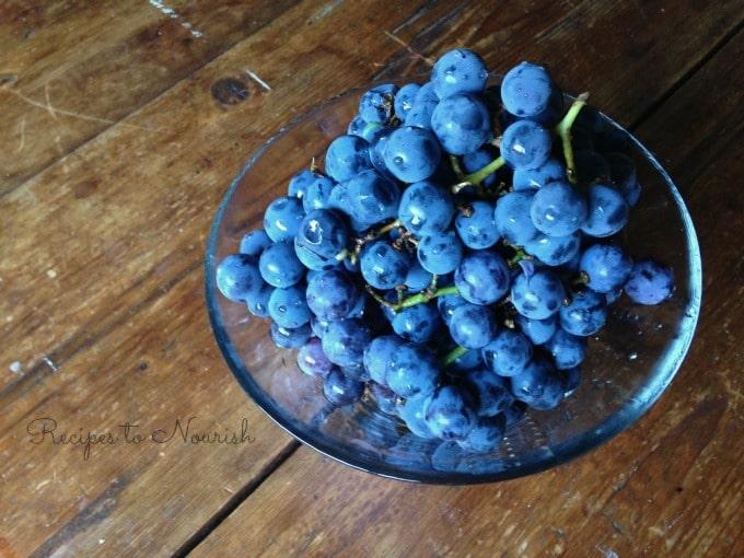 grape sherbet