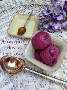 Blackberry Honey Ice Cream | Recipes to Nourish