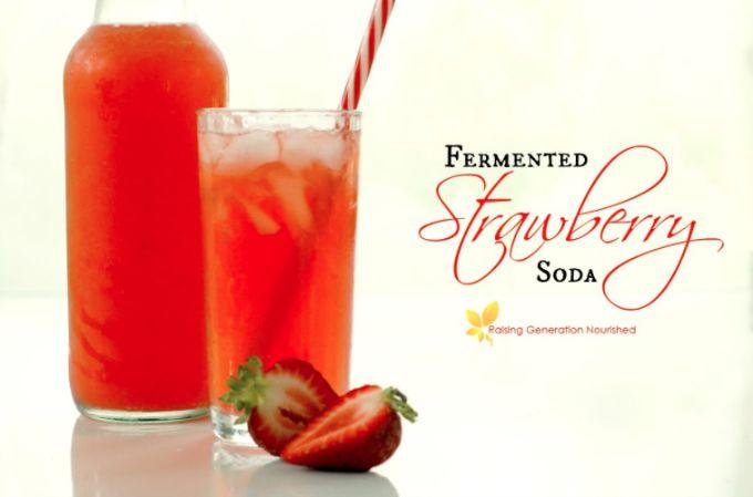 Fermented Strawberry Soda   Raising Generation Nourished