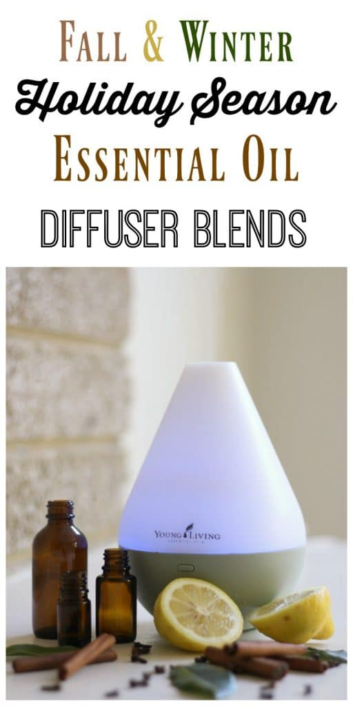 Essential oil diffuser with essential oils, cinnamon sticks, cloves, herbs and fresh lemons.