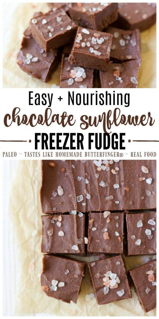 Chocolate Sunflower Freezer Fudge cut into slices.