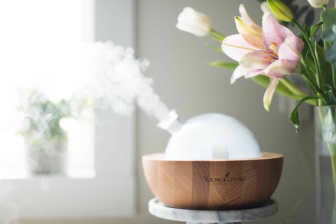 Glass diffuser with wooden base, diffusing essential oils sitting on a counter next to light pink fresh flowers.